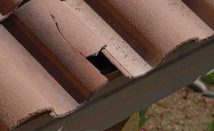 Réparation de toiture Blanquefort